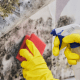 Cleaning following a toxic mold settlement in Florida